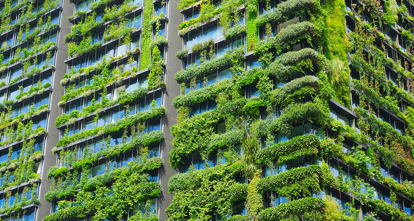 How tenants, landlords and the planet can happily co-exist