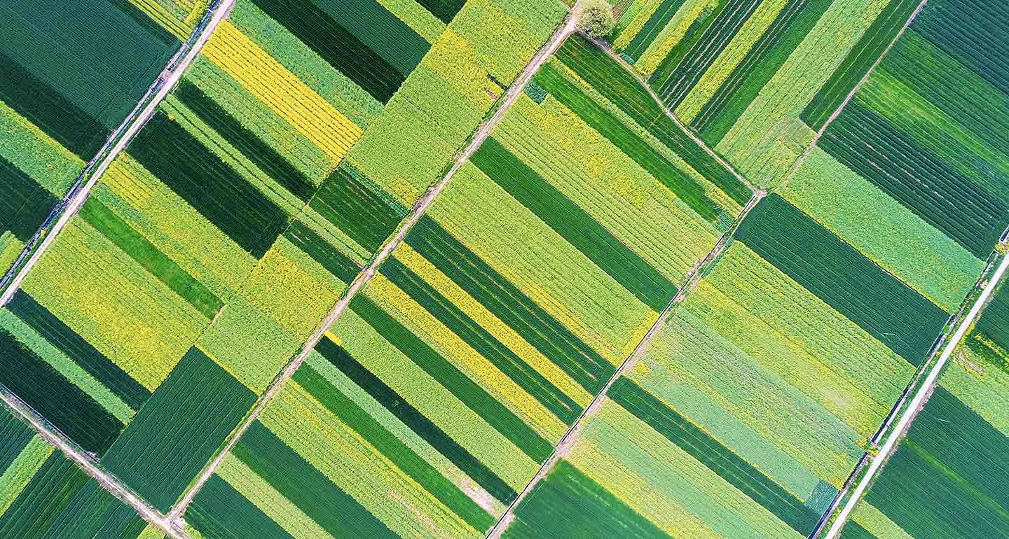1440x770_asi_natural-resources-adding-value-in-global-farmland